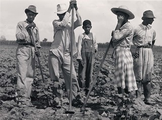 Marion Post Wolcott: Negro men and women working in a field. Bayou Bourbeaux Plantation. Natchitoches, Louisiana, 1940