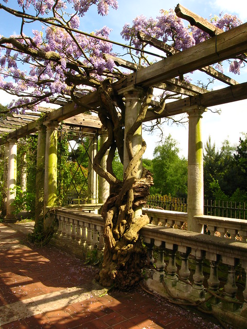 The Pergola, Hampstead Heath
