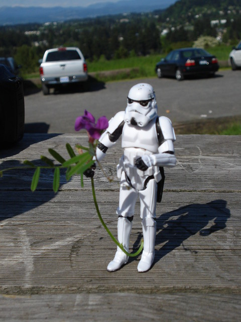 Powell Butte Stormtrooper Wedding
