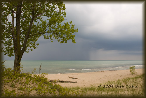 Rain Across Lake Erie