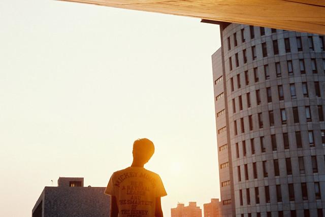 _不能辨,曉陽還是餘夕。