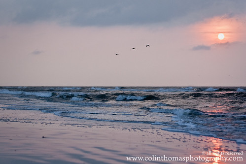 ocean morning sun beach water birds sunrise sand waves southcarolina shore lightroom hiltonheadisland