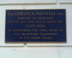 Photo of Gideon Algernon Mantell blue plaque