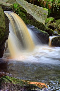 In Padley Gorge #1