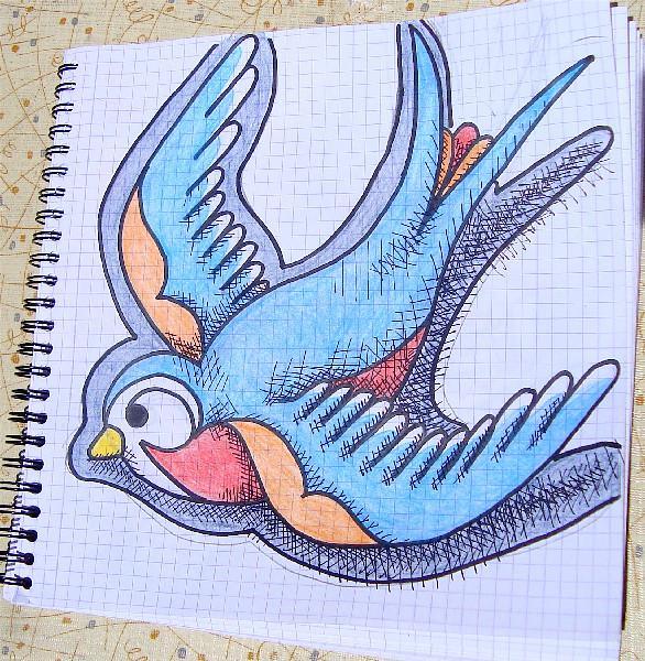 Swallow Drawings