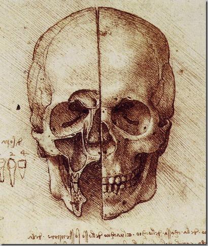 Leonardo Da Vinci Dibujos (4)_thumb[4]