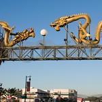 Metro Gold Line Art Tour 068