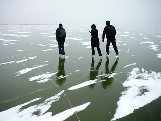Lake Neusiedl is frozen!