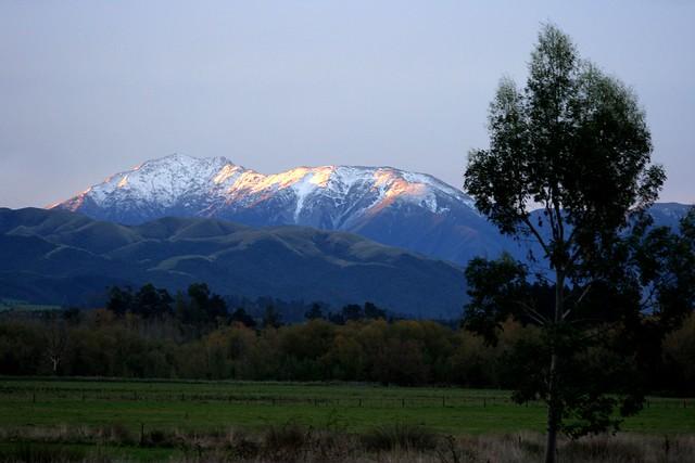 Geraldine New Zealand  City pictures : Mt Peel near Geraldine, New Zealand | Flickr Photo Sharing!