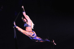 sports(0.0), pole dance(0.0), event(1.0), performing arts(1.0), aerialist(1.0), modern dance(1.0), entertainment(1.0), dance(1.0), performance(1.0), acrobatics(1.0), performance art(1.0),
