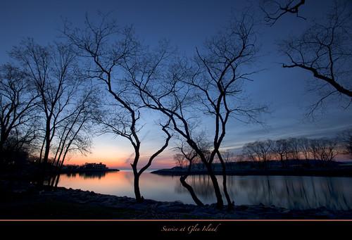 trees ny sunrise bronx frame glenisland coth5