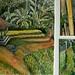 Bali-composite-bamboo 11x16