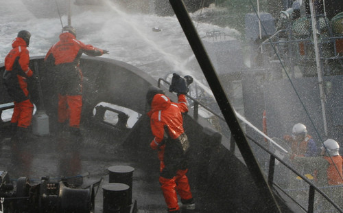 2009-02-06 Sea Shepherd crew throw bottles of rotten butter at Yushin Maru No 3