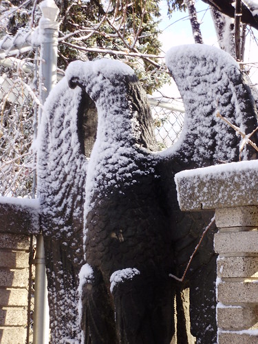 Frozen Bird