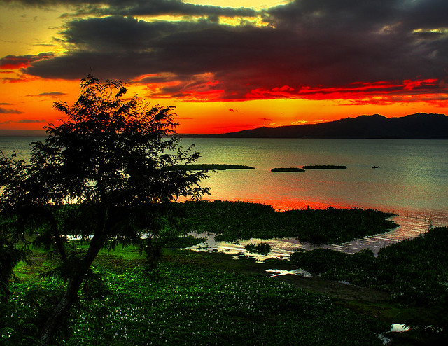 pililia, laguna sunset