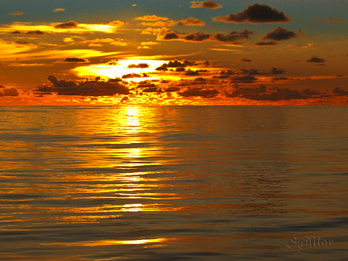 ocean new sunset newzealand pacific zealand southpacific panama 1001nights mignon oceania mywinners silor thesuperbmasterpiece southpacificsunset 1001nightsmagiccity southpacificoceansunset oceaniasunset