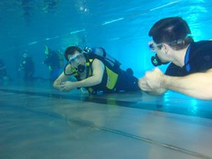 underwater diving, sports, underwater sports, water sport,