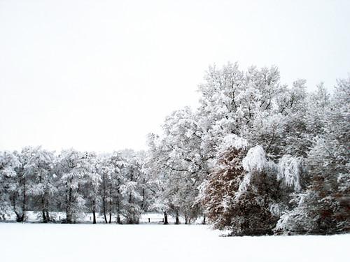 ~ snowed under ~