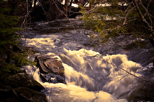 river book stream brook icewaterspringmaine