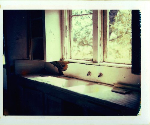 Polaroid house sink, empty