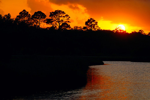 light sunset sky usa reflection tree water clouds unitedstatesofamerica fl marsh watersnowice ormaondbythesea