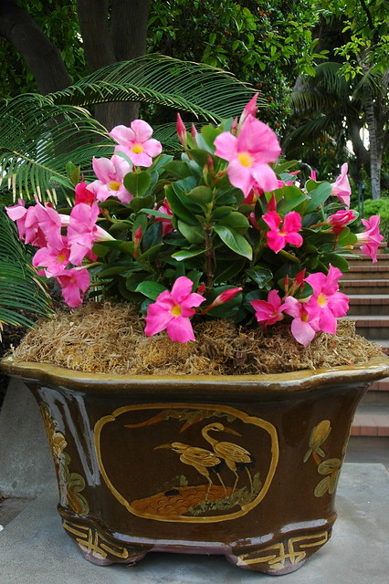 Pink Flowering Chinese Style Brown And Stork Application Art Pot Self Realization Fellowship