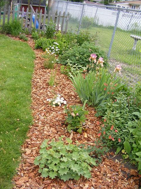 Flower Bed Fencing : 3563638582_5c9e14123a_z.jpg