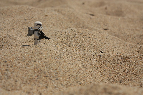 The vigilant SandTrooper