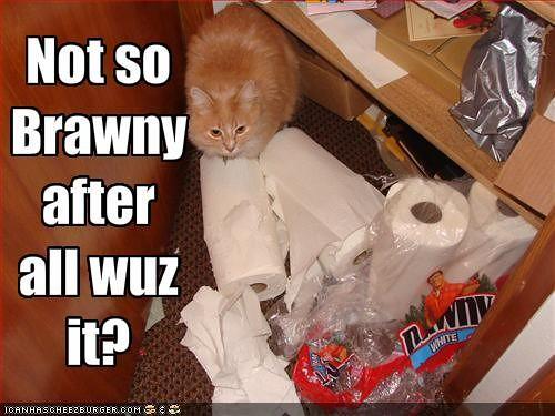 not_so_brawny