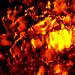 Fire & Ice_PICT2245 (Illuminated Ice)