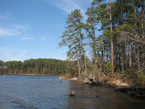 statepark park nature outdoors nc northcarolina goosecreek
