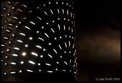 A glimpse of lamplight