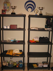 changing table(0.0), table(0.0), bookcase(0.0), shelving(1.0), shelf(1.0), furniture(1.0), room(1.0),