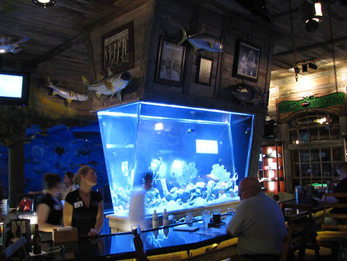 The most beautiful bar aquariums barwhiz blog for Fish tank bar