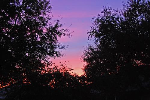 sunrise florida fl debary