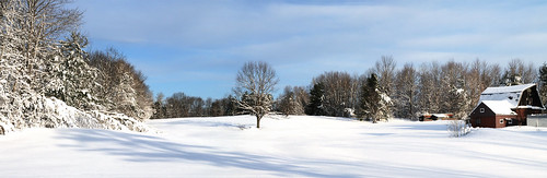 Snow Field Pano