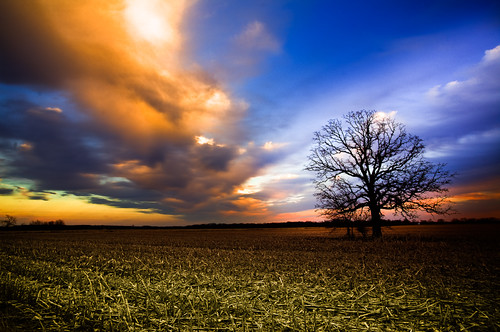 blue sunset sky orange tree nature field silhouette wisconsin clouds rural canon landscape photography evening countryside photo spring twilight oak midwest dusk farm bare branches horizon country april 5d 2009 canonef1740mmf4lusm hdr canoneos5d flickrexplore photomatixpro 3exp lorenzemlicka
