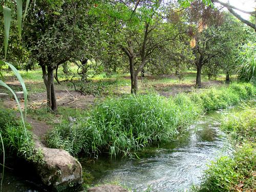 méxico mexico rioverde sanluispotosí regiónmedia