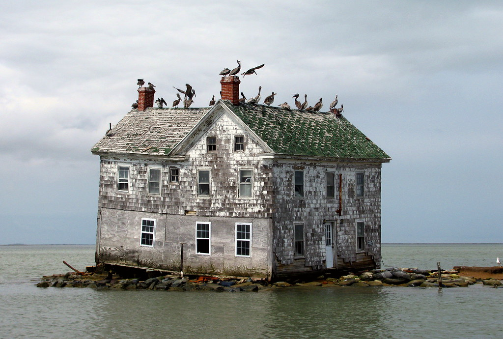 Last House on Holland Island, May 2010