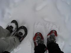 snow angel(0.0), snowboard(0.0), winter storm(0.0), freezing(0.0), snowshoe(1.0), footwear(1.0), winter(1.0), white(1.0), snow(1.0),