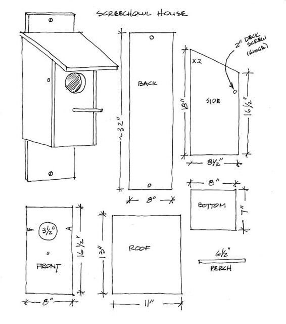 owl house plans. illustration of plywood cut plan for barred owl