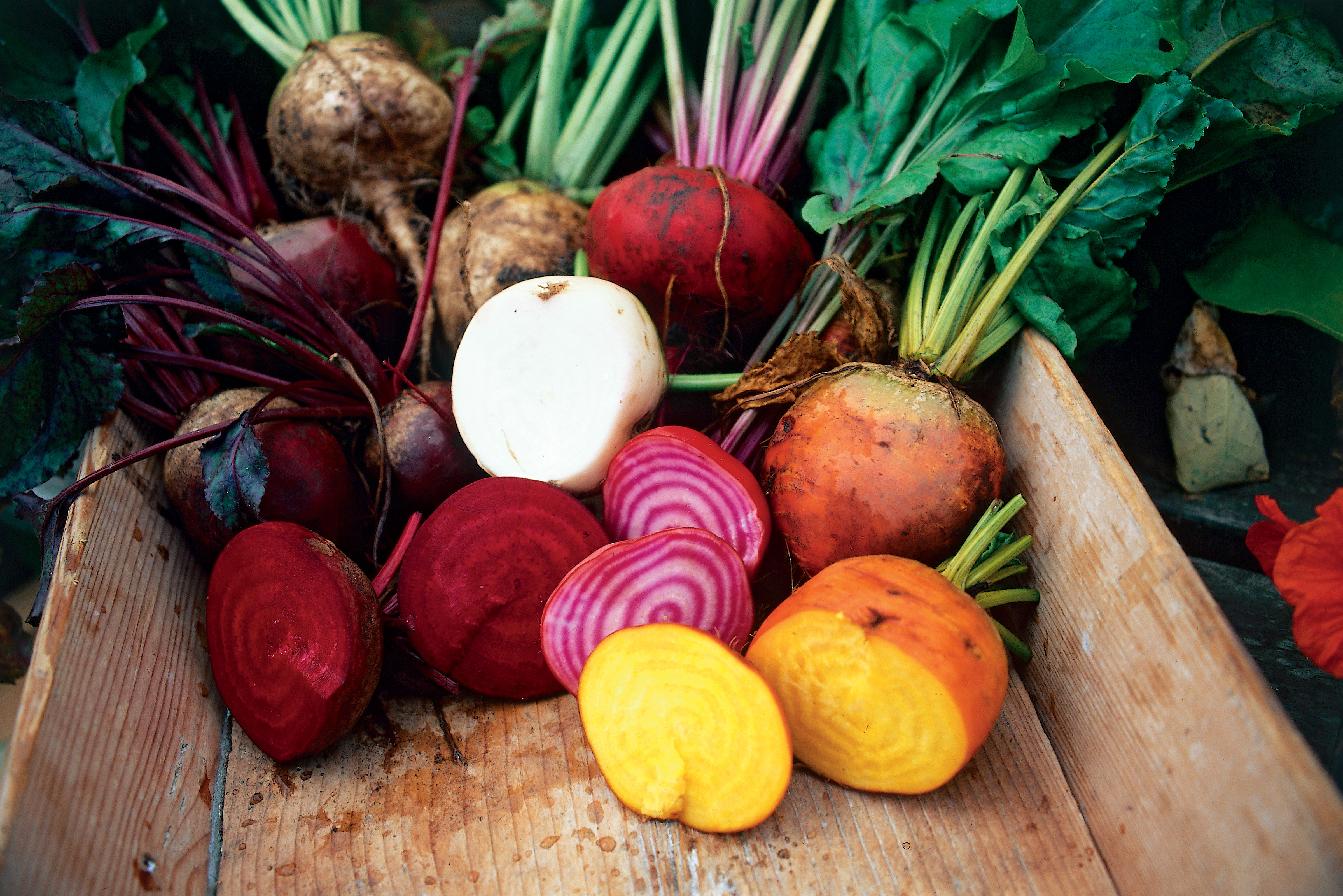 Colorful tubers and root vegetables for a healthy, gluten-free vegetarian diet.