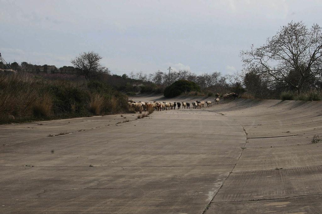Autódromo Terramar (7)
