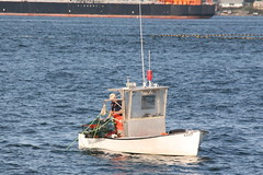 pilot boat(0.0), fishing vessel(0.0), patrol boat(0.0), tugboat(0.0), coast guard(0.0), vehicle(1.0), ship(1.0), sea(1.0), skiff(1.0), watercraft(1.0), boat(1.0),