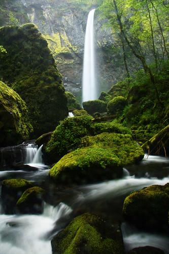 oregon waterfall mounthoodnationalforest columbiarivergorgenationalrecreationarea