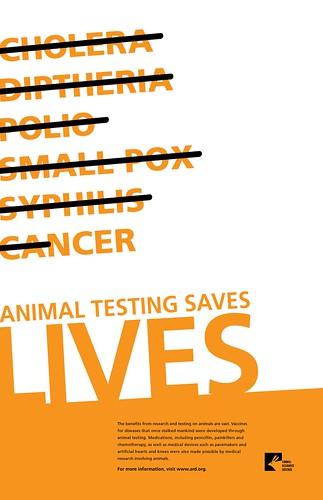 Pro - Animal Testing and Experimentation Essay