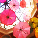 umbrellas by bambibabe48