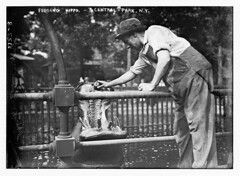 Central Park - feeding hippo  (LOC)