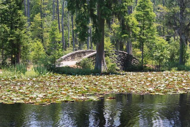 South Carolina Cypress Gardens Flickr Photo Sharing