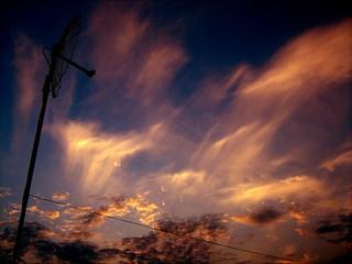 Antennas Saying Story